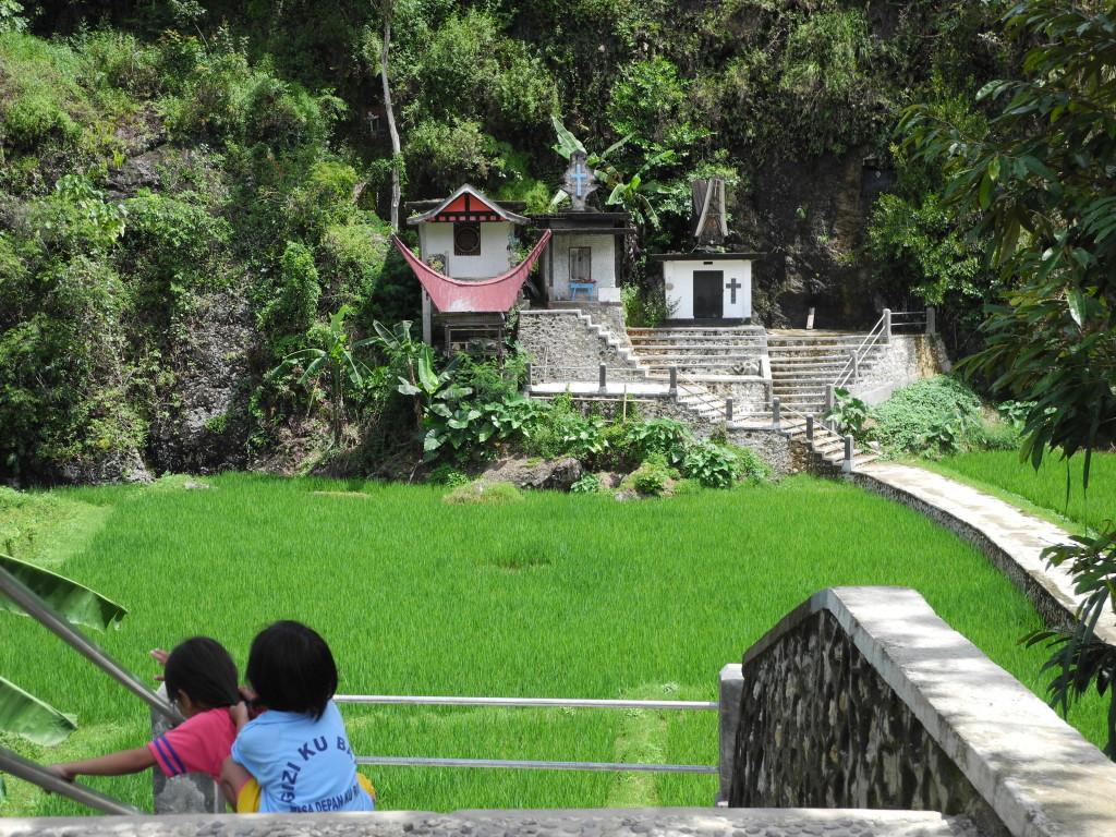 Toraja scenery